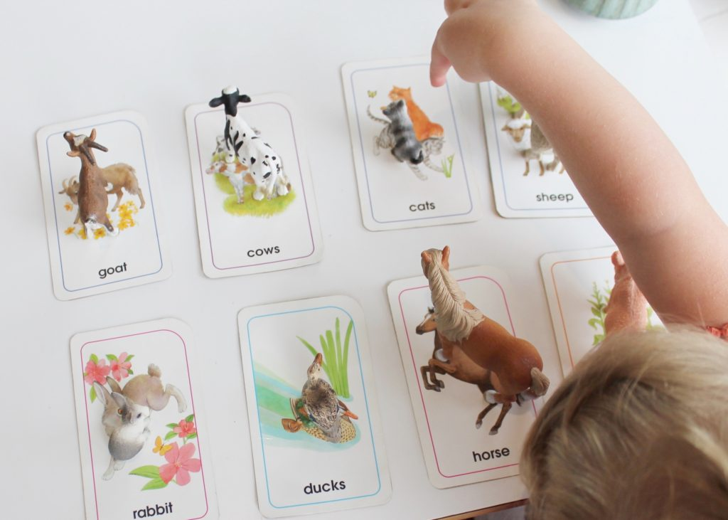 Toddler Learning Ideas Using Plastic Animals