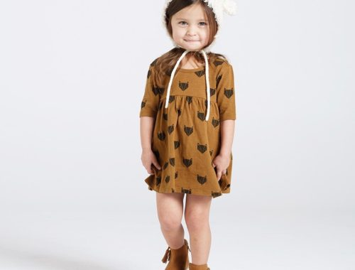 Rylee + Cru | Fox Dress and Sweatshirt for Kid's Back To School Waredrobe