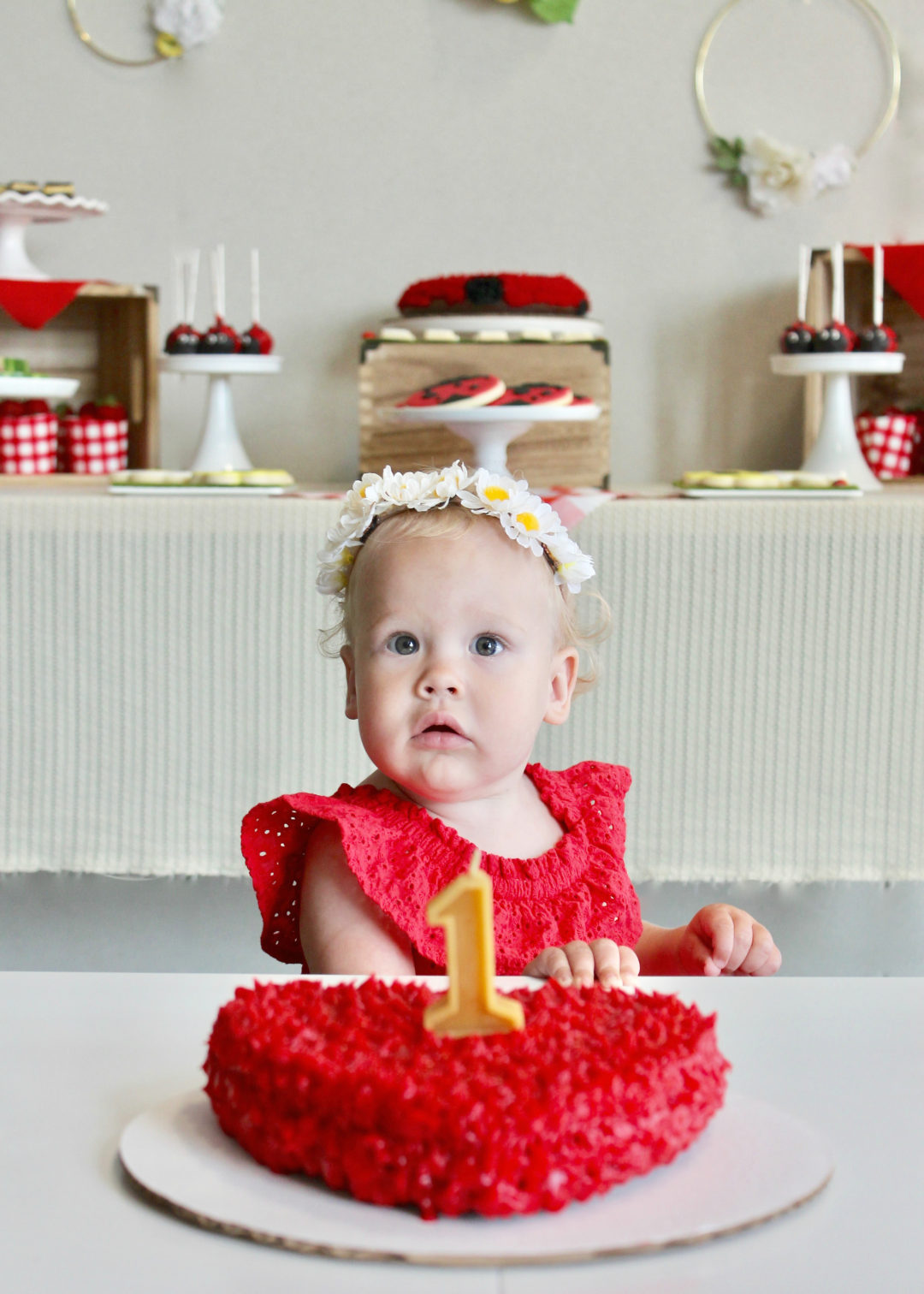 Ladybug Party | Little Lovebug Party | First Birthday Party | Girls Party Idea | Kid's Birthday | First Birthday Photos