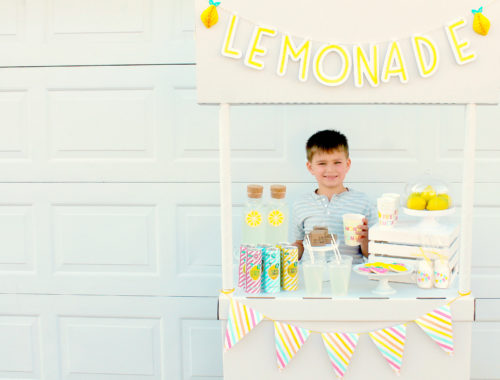 Kid's Lemonade Stand | Charity Lemonade Stand | Activities with Kids | Sparkling Lemonade | Lemon Square